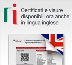 Certificati e visure anche in lingua inglese