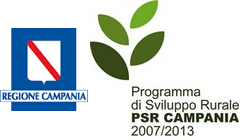 uploaded/evidenza 2016/logoregionecampania.jpg